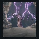 "Lightning cat--kitty-pet-feline-pet cat -kittens bandana<br><div class=""desc"">&quot;lightning kitty&quot; , cat , &quot;cute cats&quot; , &quot;tabby cat&quot; , &quot;funny cats &quot;, &quot;cat love&quot; , &quot;domestic cat&quot; , pussycat , &quot;cat lightning&quot;,  &quot;Standing cat&quot;</div>"