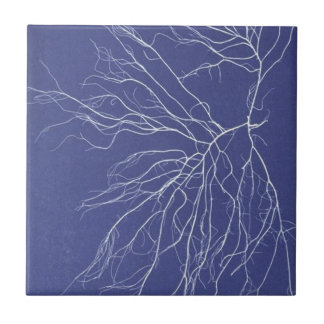 lightning cyanotype in blue and white #1 tile