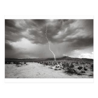 Lightning Joshua Tree B&W Postcard