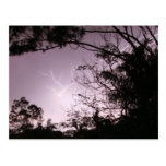 Lightning over Lawnton Post Card