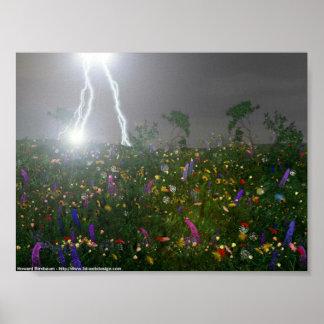 Lightning Storm over Flowers Poster