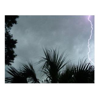 Lightning Strike In Tampa Fl Post Card
