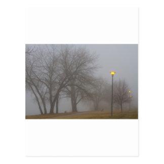 Lights and Fog Setting the Mood at McIntosh Lake i Postcard