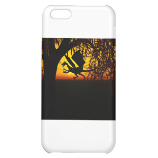 Lights and Shadows iPhone 5C Cover