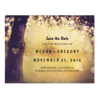 Lights Tree and Carved Heart Save the Date Postcard