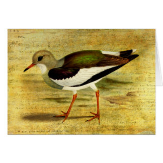 'Like a Lapwing' Greeting Card