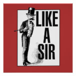 Like a SIR Poster