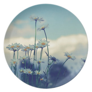 Like-guessed/advised summer meadow with clouds ski plate