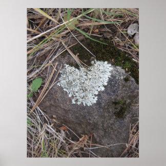 Likin' those Lichen Hearts (1) Poster