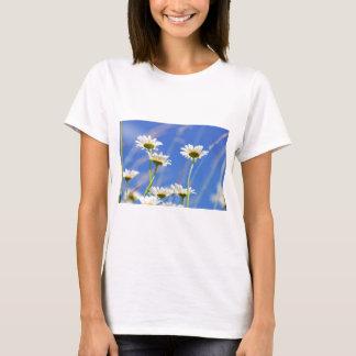Liking rites sky Leucanthemum vulgare T-Shirt