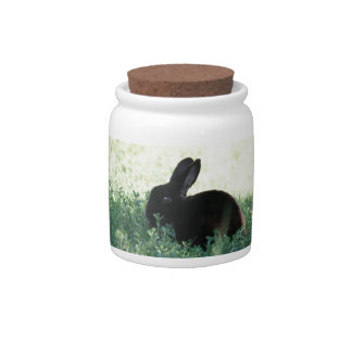 Lil Black Bunny Candy Dishes