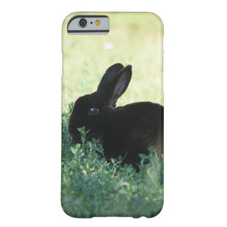 Lil Black Bunny Barely There iPhone 6 Case