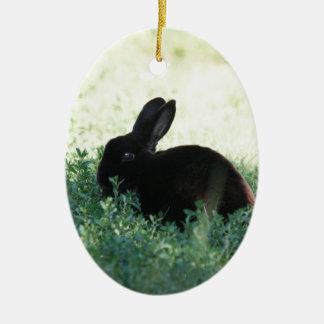 Lil Black Bunny Ceramic Ornament