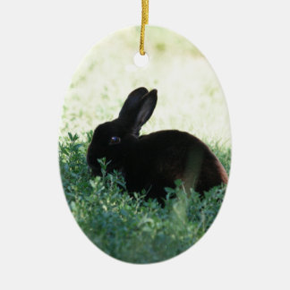 Lil Black Bunny Double-Sided Oval Ceramic Christmas Ornament