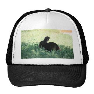 Lil Black Bunny Trucker Hat