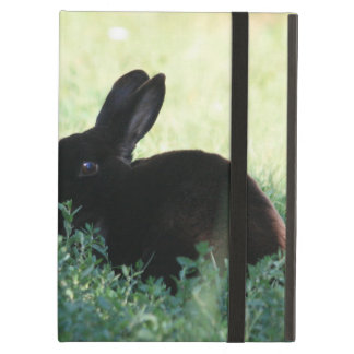 Lil Black Bunny iPad Air Case