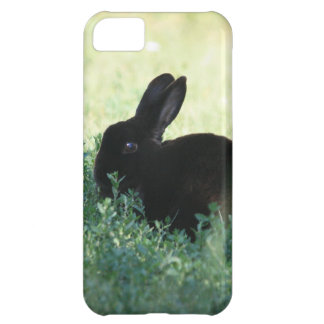 Lil Black Bunny iPhone 5C Cover