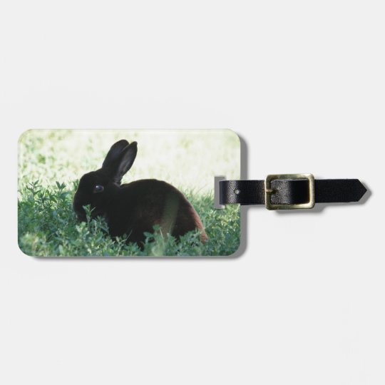 Lil Black Bunny Luggage Tag