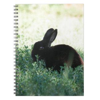 Lil Black Bunny Notebooks