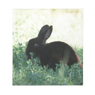 Lil Black Bunny Notepad