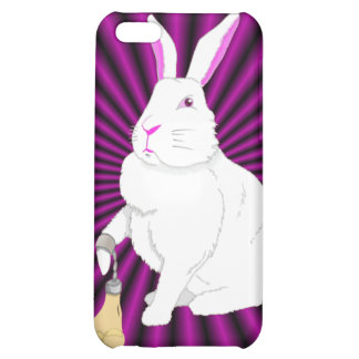 Lil Britches Case iPhone 5C Covers