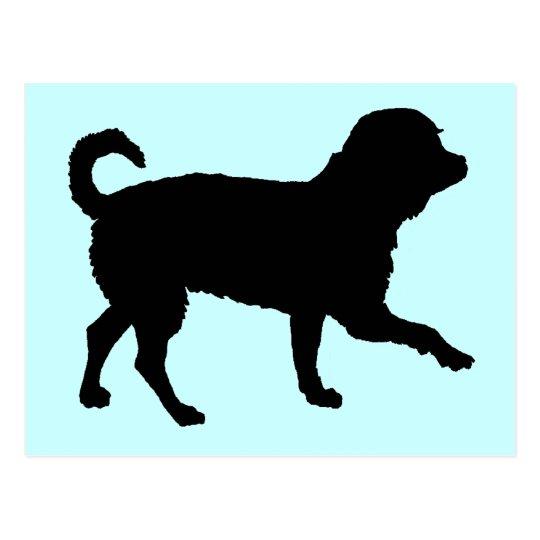 Lil' Chihuahua (black) Postcard