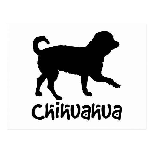 Lil' Chihuahua w/ Cool Text Postcard