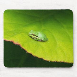 Lil' Frog Mousepad