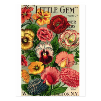 lil gem seed pack postcard
