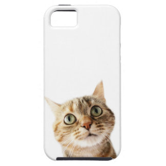 Lil Miss Cattitude iPhone 5 Cover