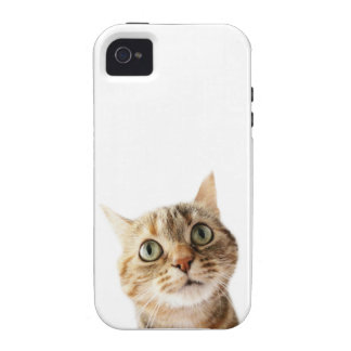 Lil Miss Cattitude Case-Mate iPhone 4 Cover