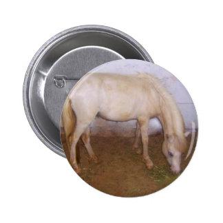 Lil Pony-2 Pins