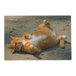 L'il Shadowboxing Cat Placemat