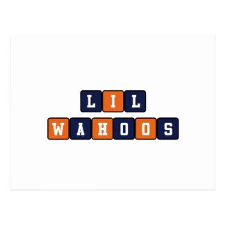 Lil Wahoos Postcard