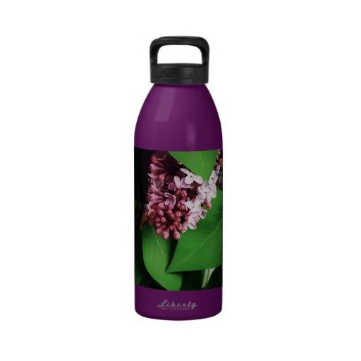 Lila con las hojas botellas de agua reutilizables