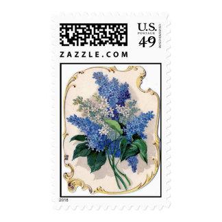 Lila del vintage sellos