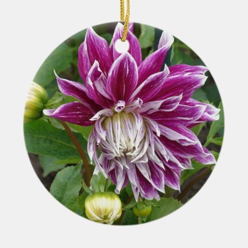 Lila flor adorno redondo de cerámica