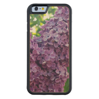 Lila floreciente funda de iPhone 6 bumper arce