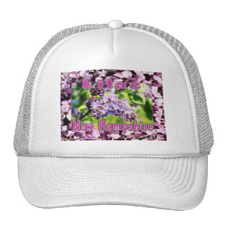 Lila - la flor de estado del NH Gorro De Camionero