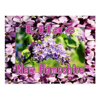 Lila - la flor de estado del NH Postales