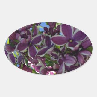 Lila púrpura franjada blanco pegatina ovalada