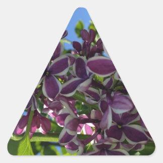 Lila púrpura franjada blanco pegatina triangular