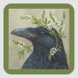 Lila the raven stickers
