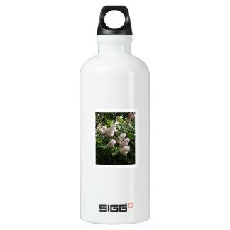 Lilac 01 water bottle