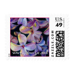 Lilac 1, www.aswope.net, www.aswope.net postage stamp