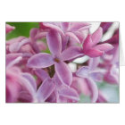 Lilac Bloom In Early Spring card