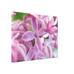 Lilac Bloom In Early Spring Gallery Wrap Canvas