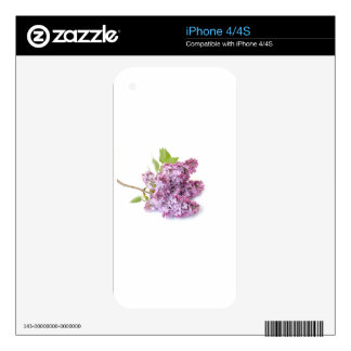 Lilac blossoms skin for the iPhone 4