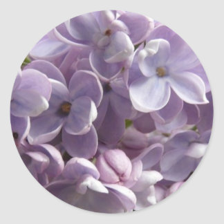 Lilac Blossoms sticker