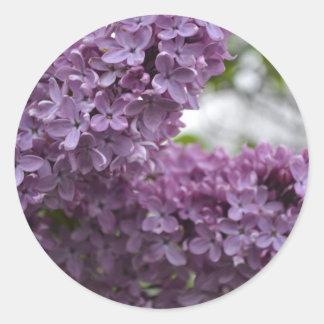 Lilac Blossoms Round Sticker